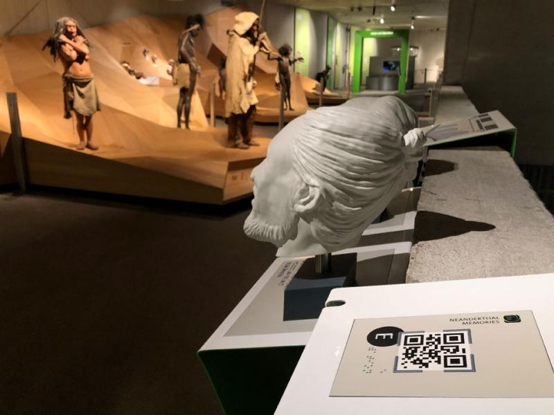 Digitale Transformation in der Museumswelt am Beispiel Neanderthal Museum